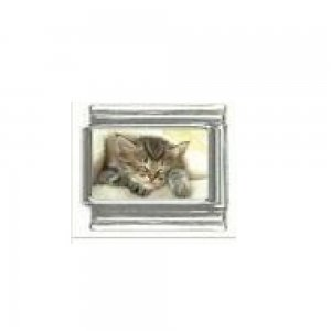Kitten sleeping - cute photo 9mm Italian charm