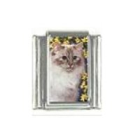 Cat - Persian cat (e) 9mm enamel Italian charm