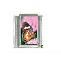 Butterfly photo a51 - 9mm Italian charm