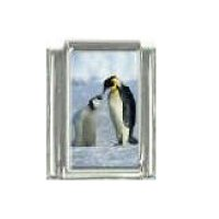 penguin (a) with baby - photo 9mm Italian charm