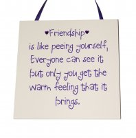Friendship is like peeing yourself... - Handmade wooden plaque